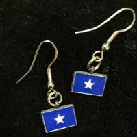 Bonnie Blue flag earrings