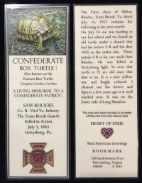 confederate box turtle